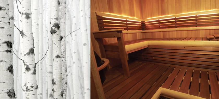 finnleo-sauna